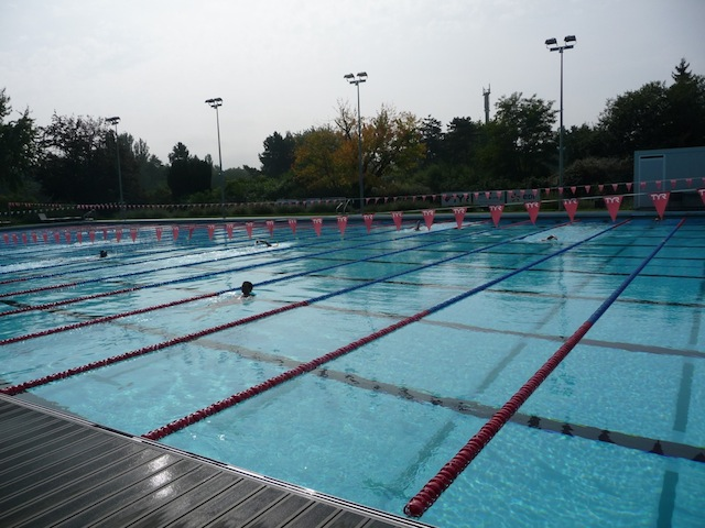 Mon mulhouse olympic natation my mulhouse for Centre du plateau piscine