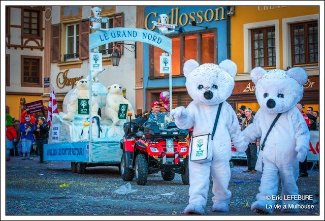char zoo mulhouse carnaval 2014