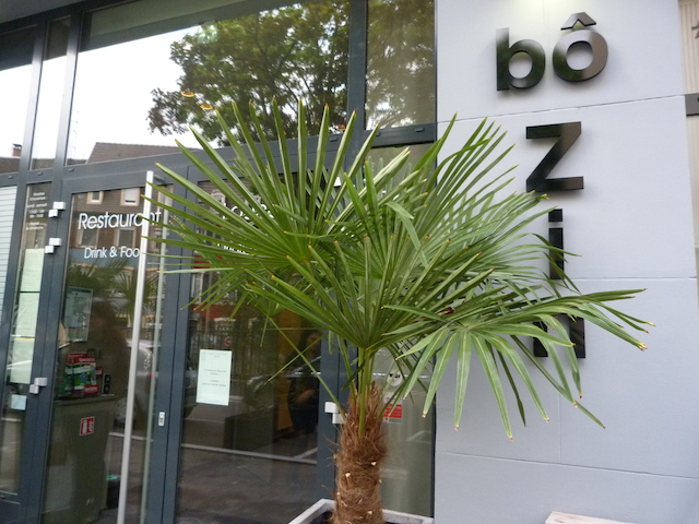 bo zin restaurant bar mulhouse