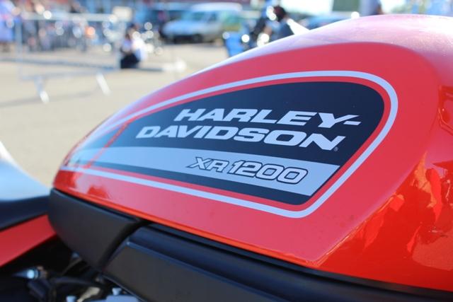 Harley Davidson - © My-Mulhouse.fr