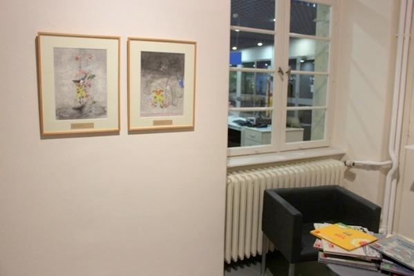 Vous voyez tous les livres d'Elzbieta en bas à gauche ? - © My-Mulhouse.fr