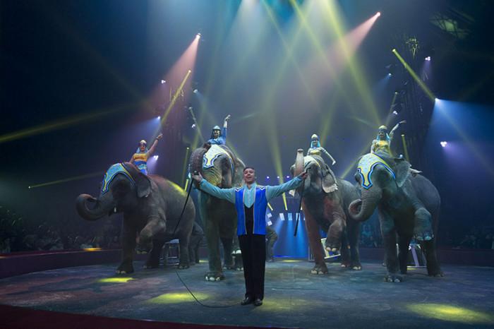 Le dompteur d'éléphants