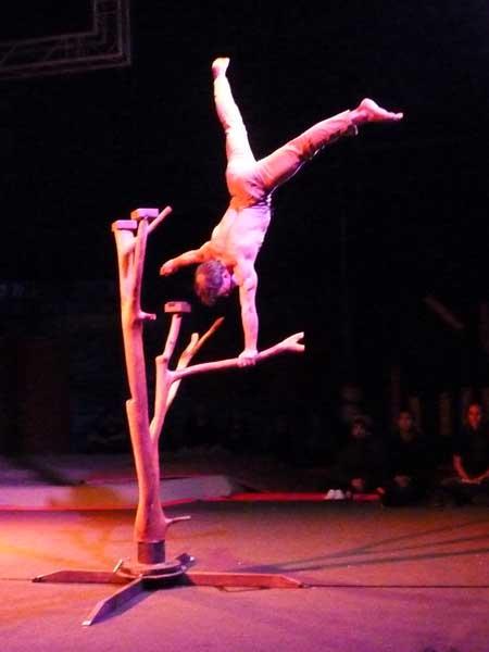 Convention d'acrobatie - Belfort