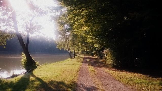 Belle balade jusqu'à l'étang Rieweiher - © My-Mulhouse.fr