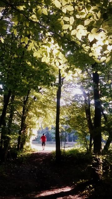 L'étang Riedweiher au loin - © My-Mulhouse.fr