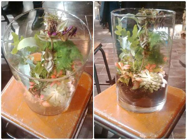 terrarium réalisation cours art floral