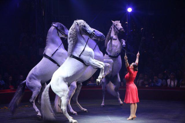 Les chevaux, un moment phare de la représentation - © My-Mulhouse.fr
