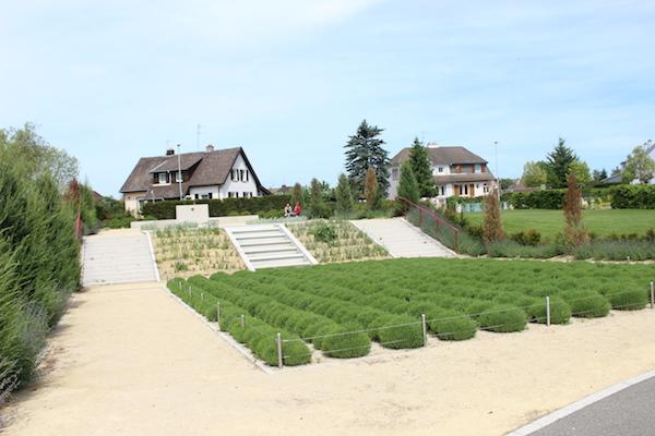 Jardins du monde wittelsheim parc my mulhouse for Jardin italien