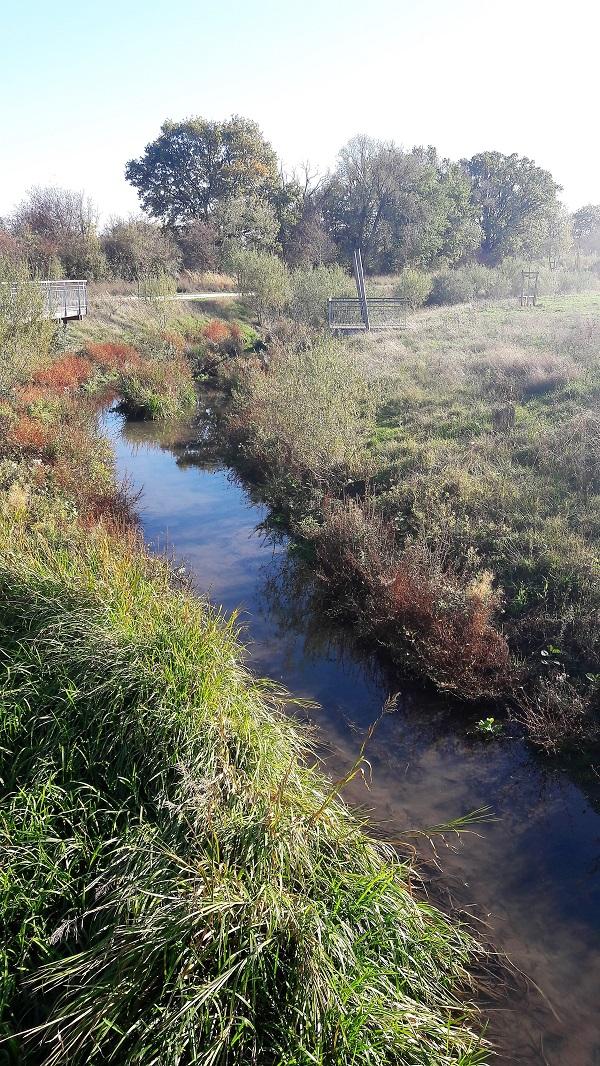 cours d'eau parc