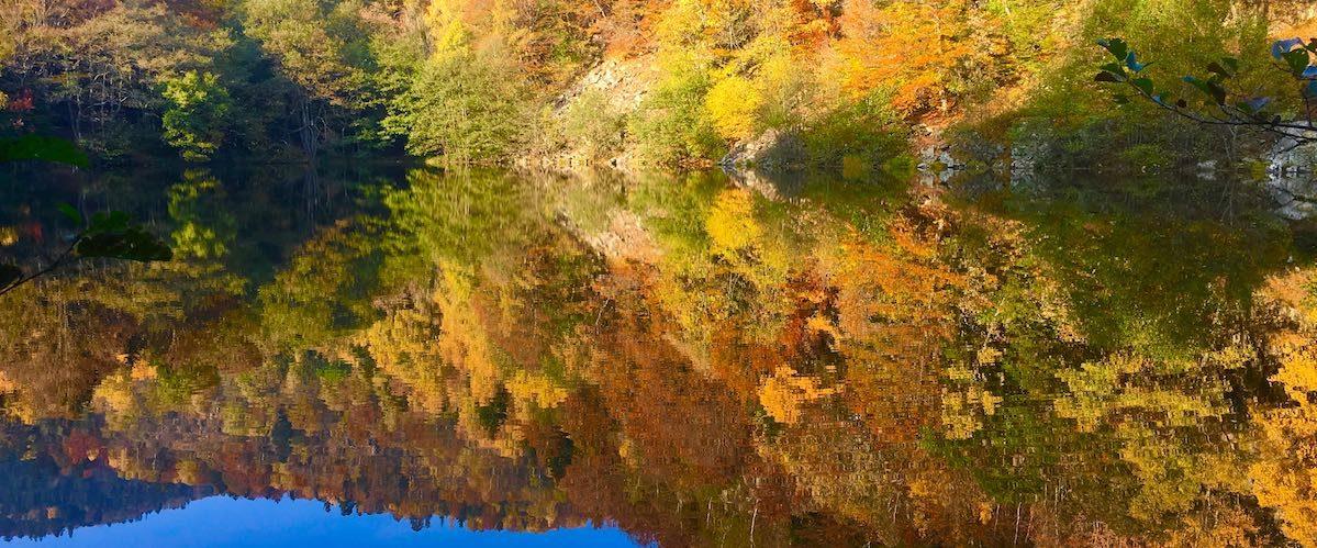 Le Neuweiher en automne - © My-Mulhouse.fr