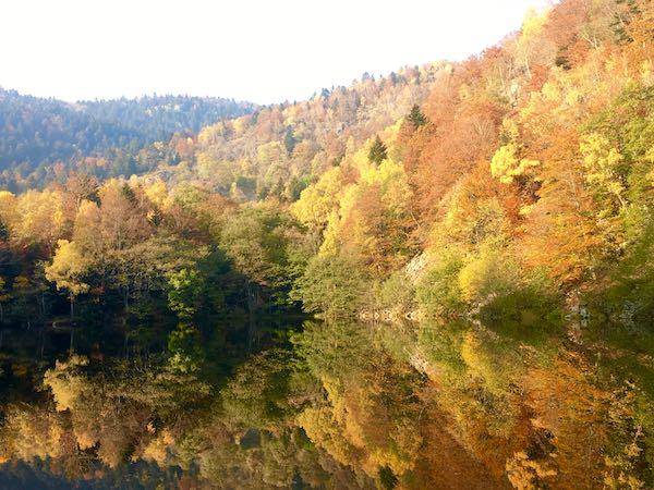 De belles couleurs et des jeux de reflets au petit Neuweiher - © My-Mulhouse.fr