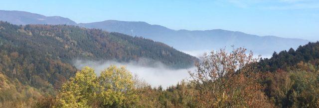 Un joli panorama sur les Vosges - © My-Mulhouse.fr