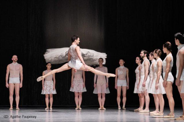 lac des cygnes ballet opera rhin